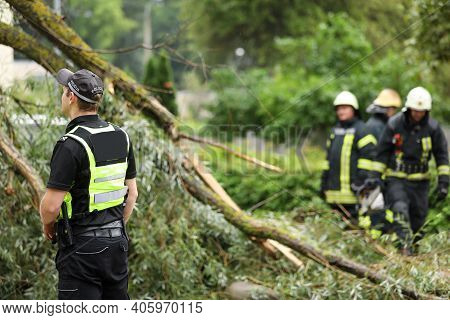 Firefighters And Police Officer Help Clean Up The Effects Of A Fallen Tree On Cars After The Storm I