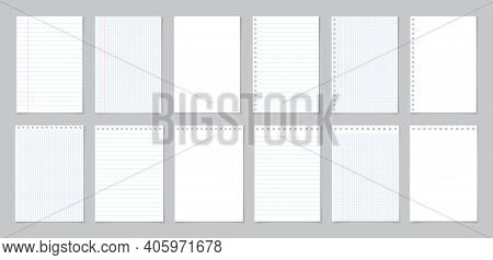 Paper With Line And Grid. Page Of School Notebook. White Sheet For Note. Notepad With Texture. Templ