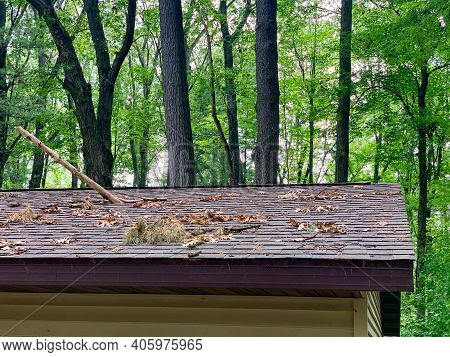 Tree Branch Puntures A Roof After A Severe Storm