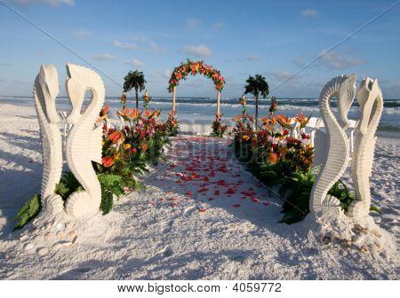 Beach Wedding Path & Archway