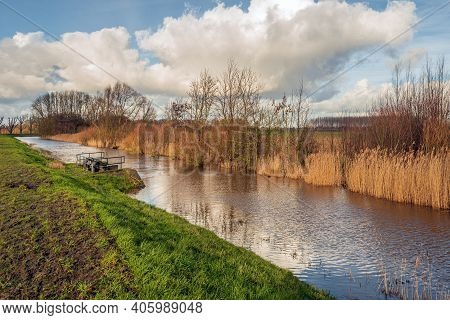 Old Creek In A Dutch Polder. The Reeds On The Other Side Of The Water Are Dry And Yellowed. A Culver
