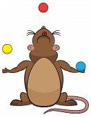 Vector of cartoon rat juggling three balls. poster