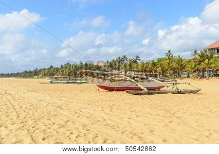 Sri Lanka. Negombo. The Coastline Of Beautiful Beaches And Fishing Boats