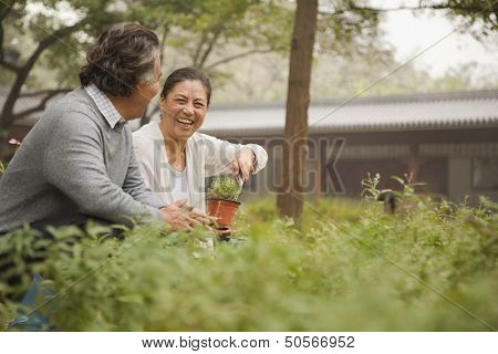 Smiling senior couple in garden
