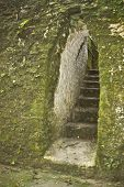 Mayan arch through a moss covered wall at the Cahal Pech Archeological Reserve outside San Ignacio in Belize poster