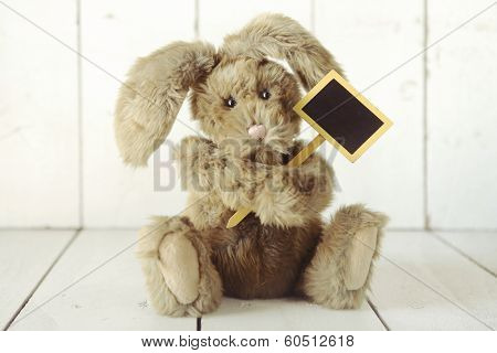 Adorable Teddy Bear Like Home Made Bunny Rabbit on Wooden White Background