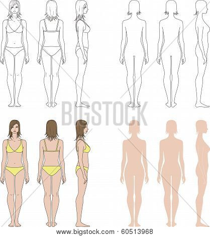 Vector illustration of women's figure. Front, back, side views poster