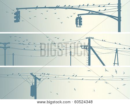 Set of horizontal banners with birds on power line in pale tone. poster