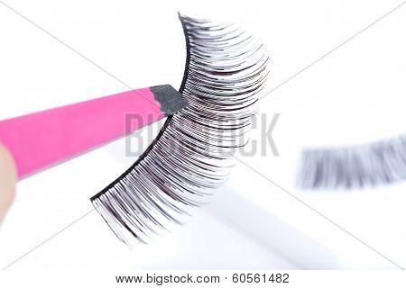 False Lashes And Pink Pincers, Closeup