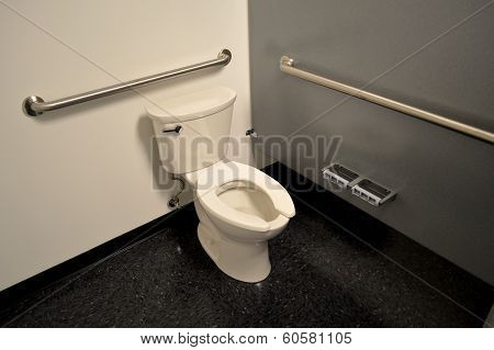 Toilet in a handicap stall