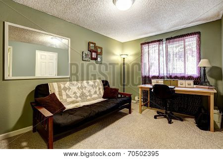 Geen Offfice Room With Sofa And Desk