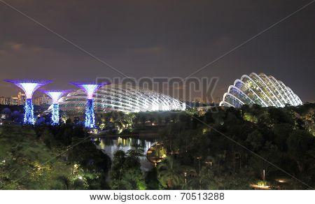 Supertree Grove Singapore city view