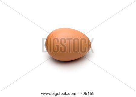Solitary Egg