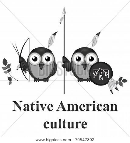 Bird Native American culture isolated on white background poster