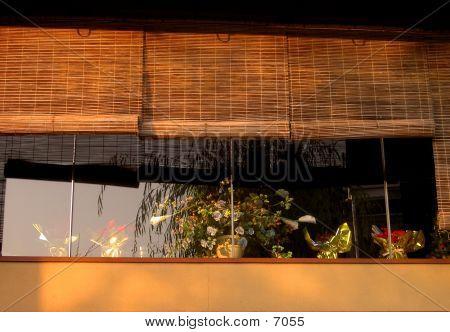 Window In Gion
