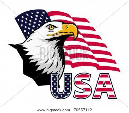 American eagle against USA flag.