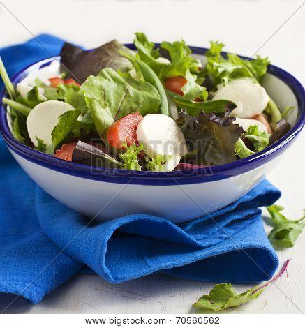 Fresh Salad With Bocconcini