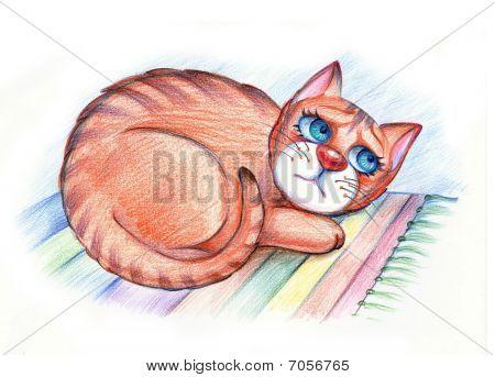 Sad Hungry Cat
