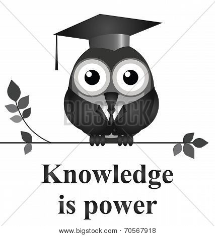 Monochrome knowledge is power message isolated on white background poster