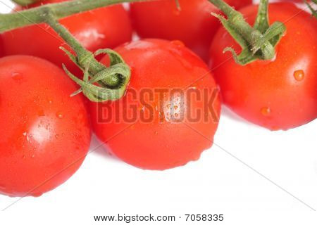Group Of Tomatos On The White Background