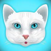 cat face eyes vector kitten bow hair facial portrait poster