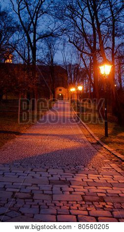 Stony path with tree alley above to the castle gate at night alighted by lanterns