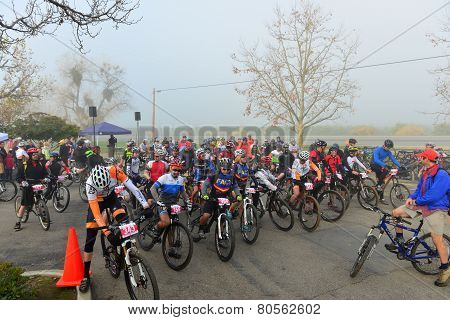 Cycling Race Starting Line