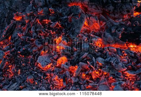 The Burning Coals Of A Fire