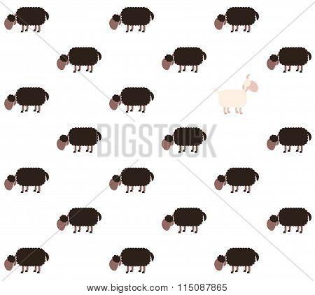 Black Sheep White Sheep Comic