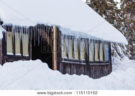 Icicles On Old House