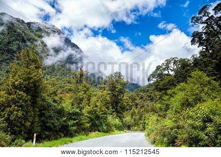 Gravel road through temperate rainforest at Fiordland National Park at the South Island of New Zealand with snow-capped steep mountain in background