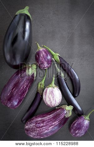 Eggplant varieties on black slate background.  Overhead view.
