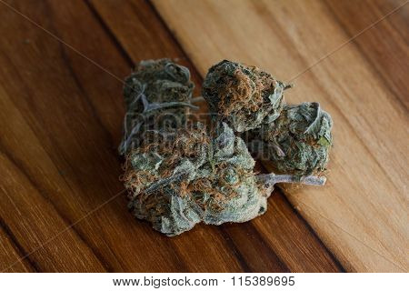 Cannabis Indica Bud (for Medicinal Purposes)