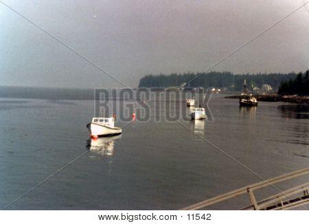 Moored Boats