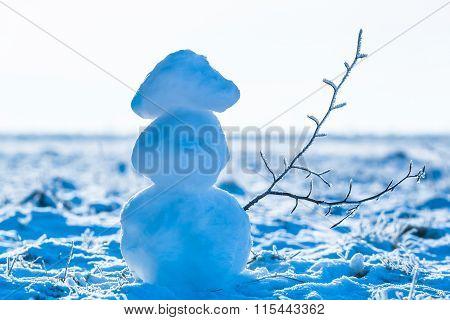Snowman With Frozen Branch