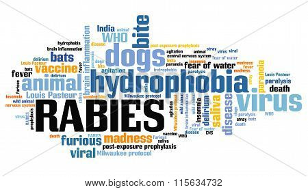 Rabies Word Cloud