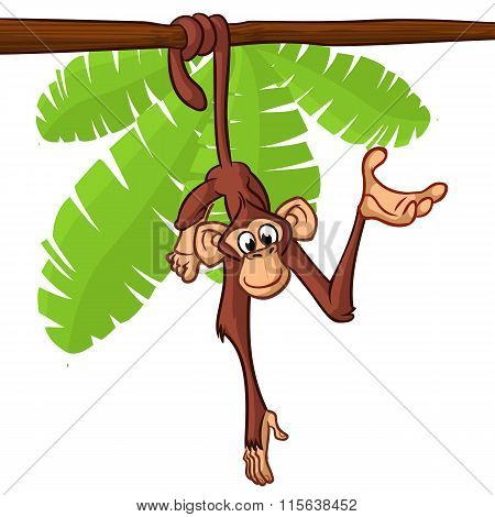 Cute monkey hanging on the tree branch with his tail