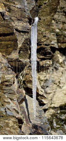 Picture of an icicles melting down on a sunlight