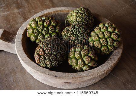 Group Of Fruits Of Pandanus Tree
