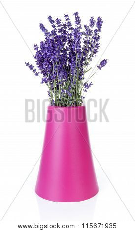 Bouquet Of Picked Lavender In Vase