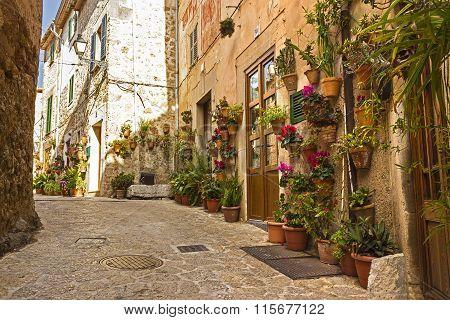 Valldemossa flowered wall