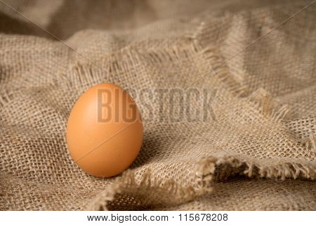 One Egg On Burlap Material Background