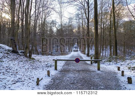 No Parking Sign On The Next Mark In The Winter Forest In January, Brussels, Belgium