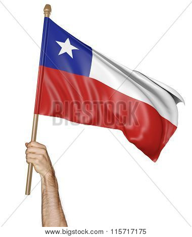 Hand proudly waving the national flag of Chile