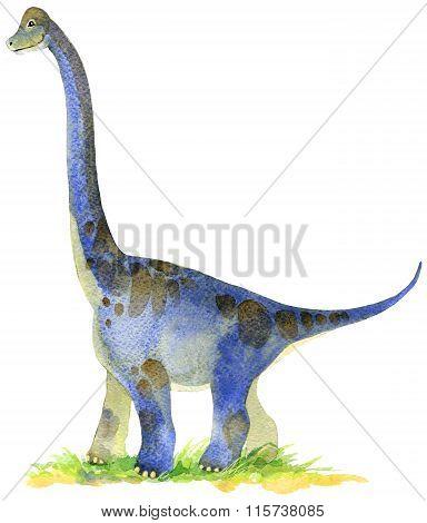 Dinosaur. Dinosaur Watercolor drawing. Dinosaur illustration. Cartoon dinosaur.
