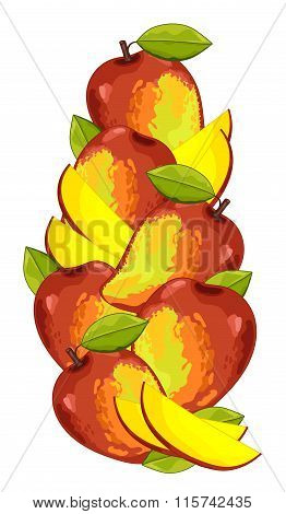 Mango isolated, Vector, composition.