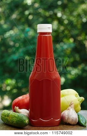 Tomato, garlic, cucumber, hot pepper, paprika and bottle of ketchup.