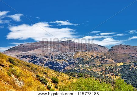 Andalusian Landscape In August.