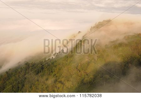 The Sea of Mist on the top of mountain, Thailand