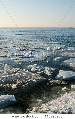 Melting Ice Floe At The Sea